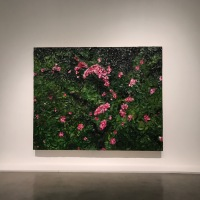 Julian Schnabel: New Plate Paintings