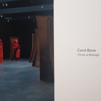 Musings on Material & the Presentation of Art by Carol Bove